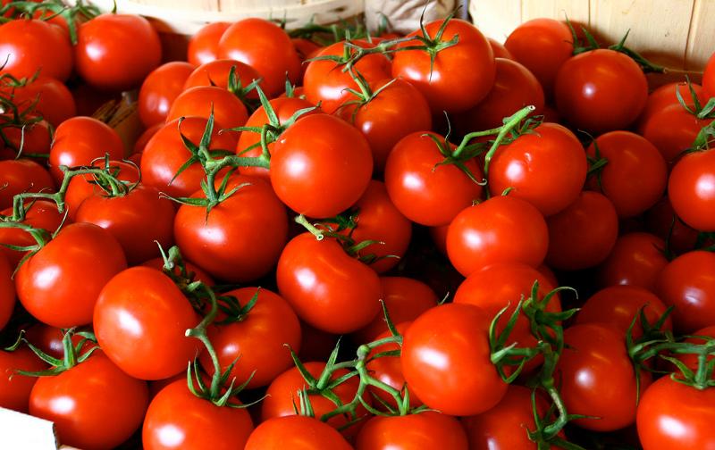 Tomatoesrsz